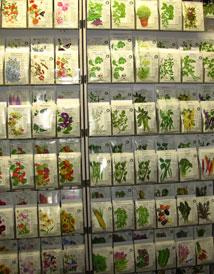 Soil & Seeds